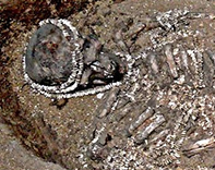 Early human remains
