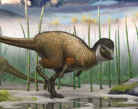 Kulindadromeus dinosaur credit Pascal Godefroid