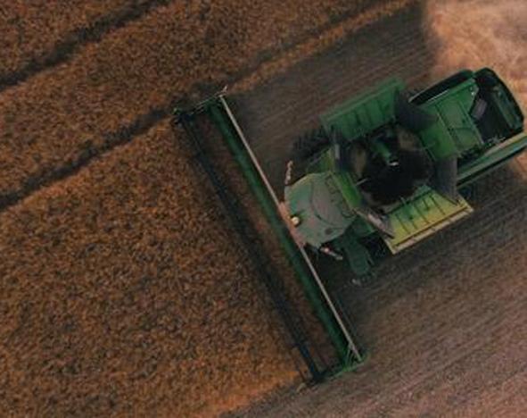Harvest. Courtesy of Scott Goodwill