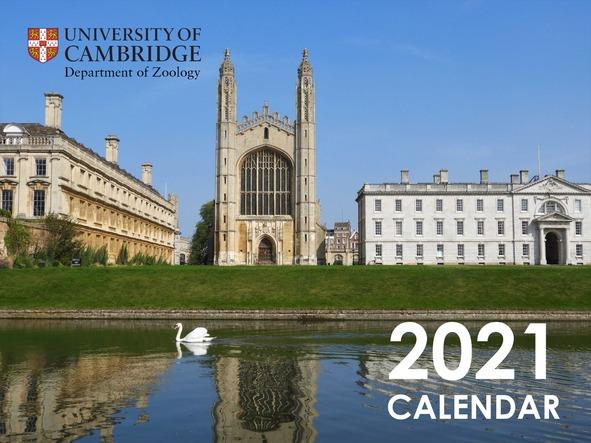 Cover of 2021 calendar