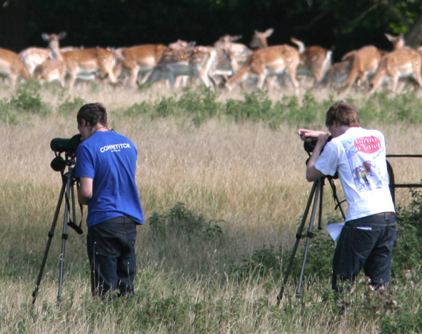 Watching deer on the Field Course