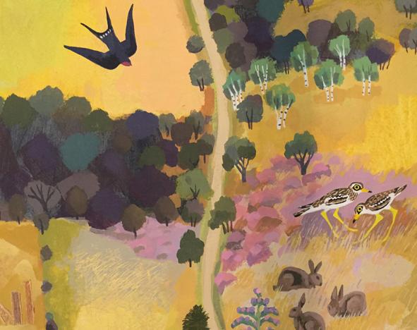 Illustration of birds and woodland