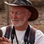 Professor Nick Davies