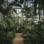 Image of a garden centre