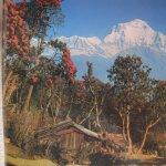 The Annapurna Range