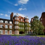 Lavender in front of Newnham College buildings