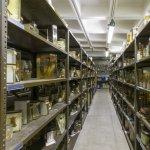 Museum of Zoology storage facility