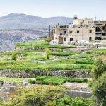 Saiq Plateau, Oman