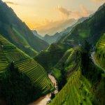 Terrace Mu Cang Chai