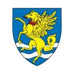 Robinson College shield