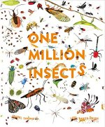 One Million Insects cover