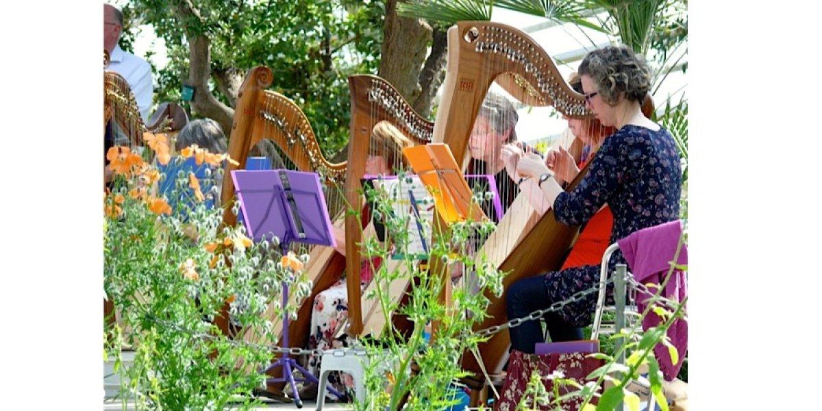 Harpists in Botanical Garden of Wales