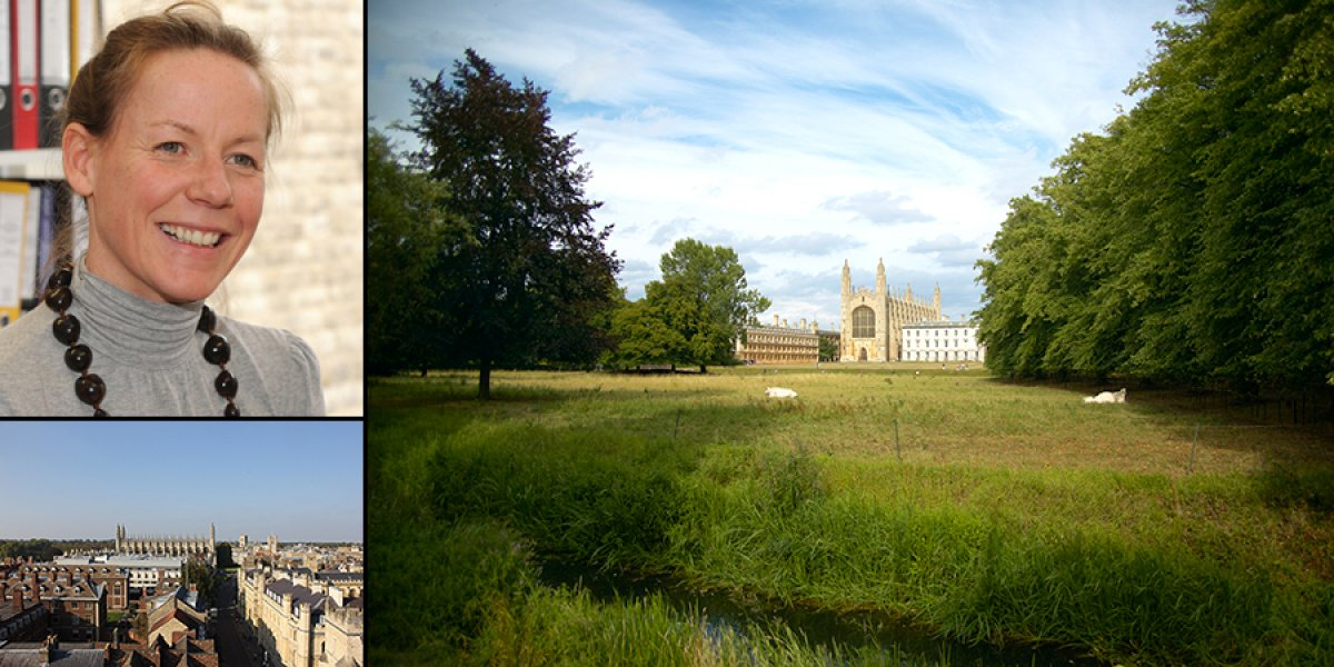 Sarah Moore, King's College viewed from the Backs, view over King's Parade