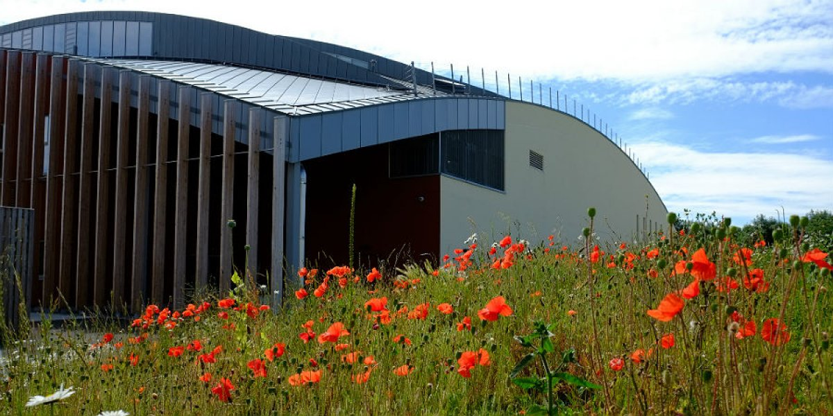 Sports Centre exterior in summer