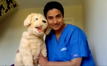 Dynatra Subasinghe with toy dog
